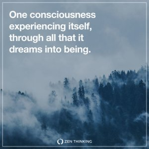 one-consciousness-experiencing-itself-through-all-that-it-dreams-into-being-zen-thinking-quote-brian-thompson-advaita-nonduality