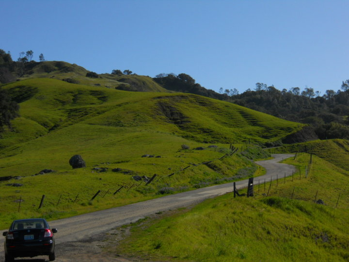 My rental car & a stretch of Santa Rosa Creek Road as it climbs the 2,000 foot high ridge east of Cambria.